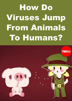 How Do Viruses Jump From Animals To Humans?