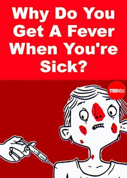 Why Do You Get A Fever When You're Sick?