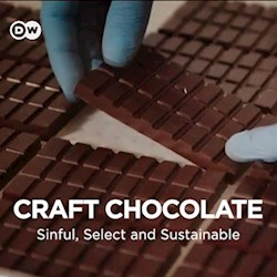 Craft Chocolate Sinful, Select and Sustainable