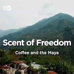 Scent of Freedom - Coffee and the Maya