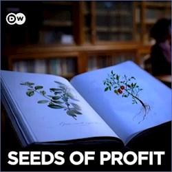 Seeds of Profit